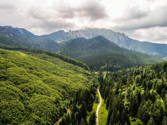 Munții Ciucaș (Vama Buzăului)